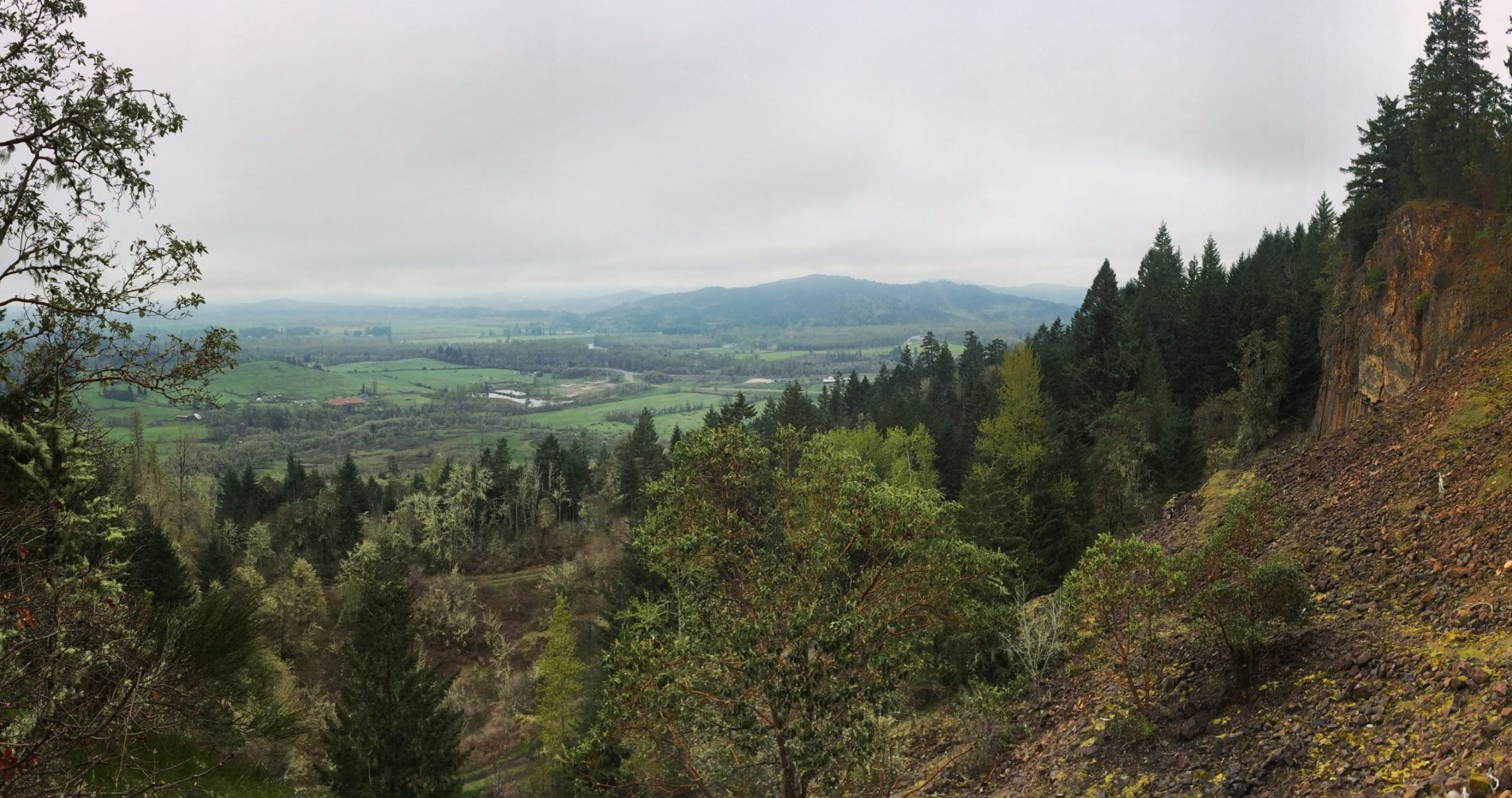 View from Thurston Hills toward Middle Fork Willamette